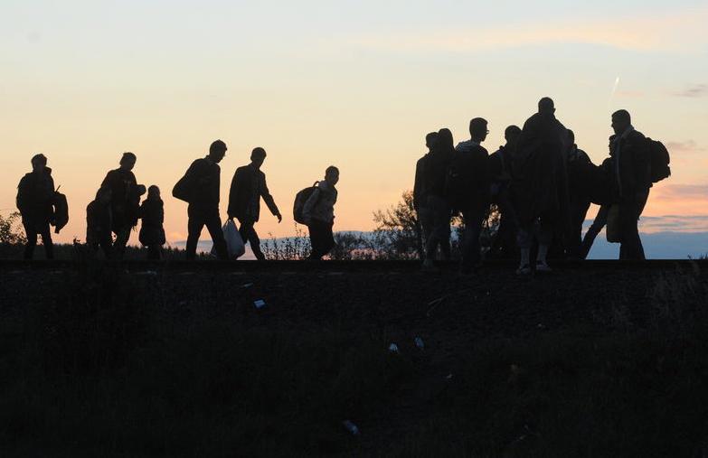 migránsoklead